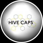 Hive Caps e Hive Cups